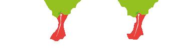 Les Épices Curiens